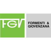 FGV italy