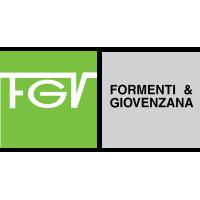 FGV italy